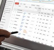PPC audit services